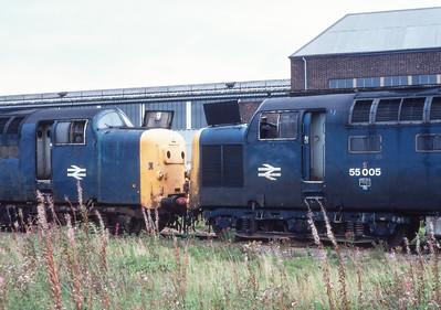 55016&55005. Doncaster works