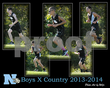 2013 - 2014  Boys Cross Country