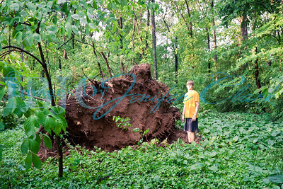 "Root from huge tree. Ryan Clark is over 6' 3"" and is used to show the size of this tree base. Rockywaters Dr, Alcoa"