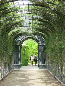 Romantic couple in the Schönbrunn gardens