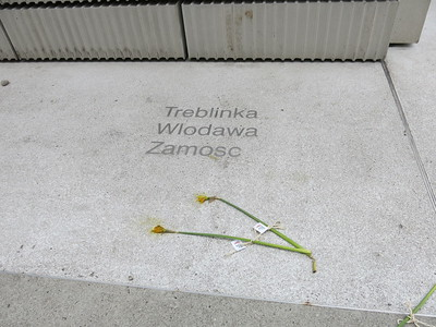 Flowers at Jewish Memorial in Vienna