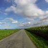 Rather boring Danish countryside
