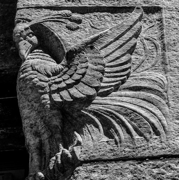 Bryn Athyn Cathedral - Birds of a Feather-0022