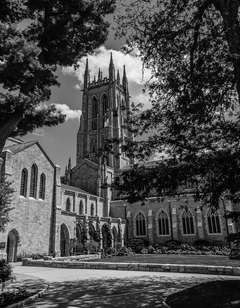 Bryn Athyn Cathedral - New Jerusalem Church-0062