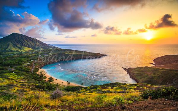 Hawaii Landscapes Oahu