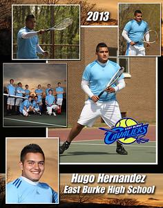 Hugo3 copy