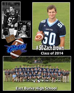 Zach Brown copy