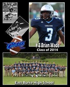 Brian Wade copy