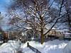 Enero de 2009. Llego a Boston desde Calgary después de una escala de 4 horas de sol y buen tiempo en Las Vegas