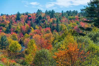 New Hampshire-0285