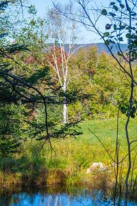 Vermont-9768