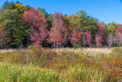 New Hampshire-0392