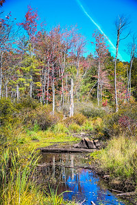 New Hampshire-0389_90_91