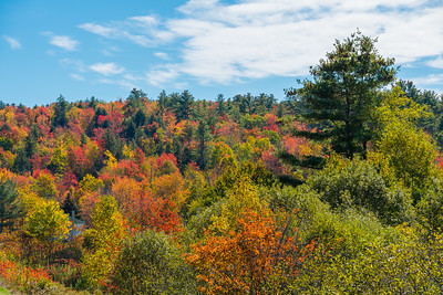 New Hampshire-0287