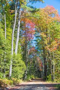 New Hampshire-0292