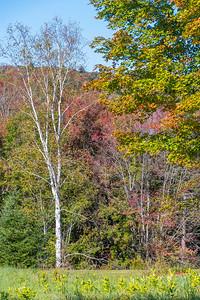 Vermont-9766