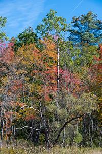 New Hampshire-0393