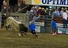 Bulls Only 2010_0561