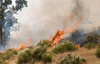 Lakeside vegetation fire 06-01-2010_0305