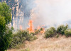 Lakeside vegetation fire 06-01-2010_0331
