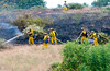 Lakeside vegetation fire 06-01-2010_0335_1