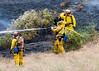 Lakeside vegetation fire 06-01-2010_0340