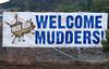 mud run promo_2971