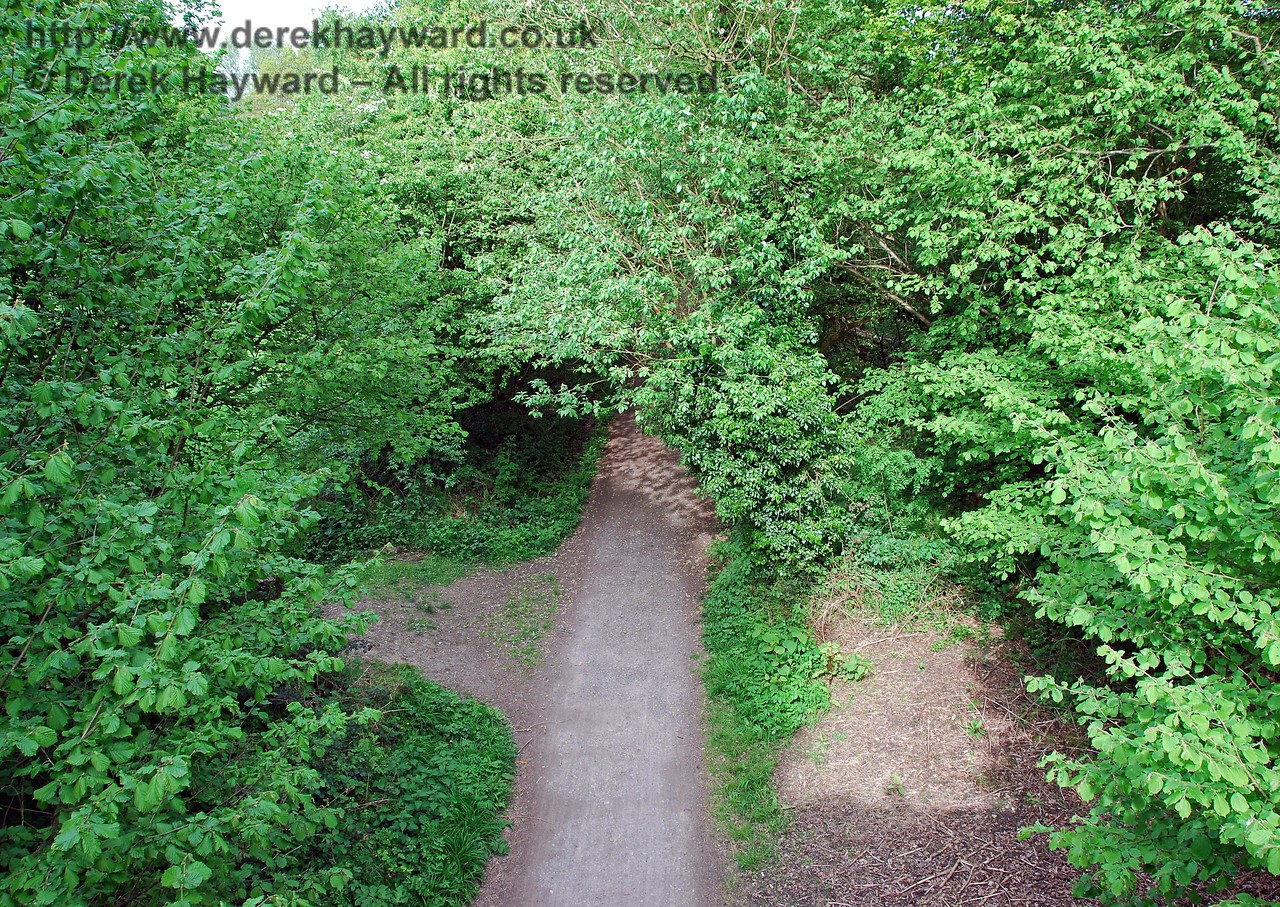 Looking east from the top of Ashdown House Bridge. Although the trees provide a pleasant country atmosphere, many of the views that would have been available when the trains were running are obstructed by the significant growth of trees and shrubs after the line closed. 09.05.2009