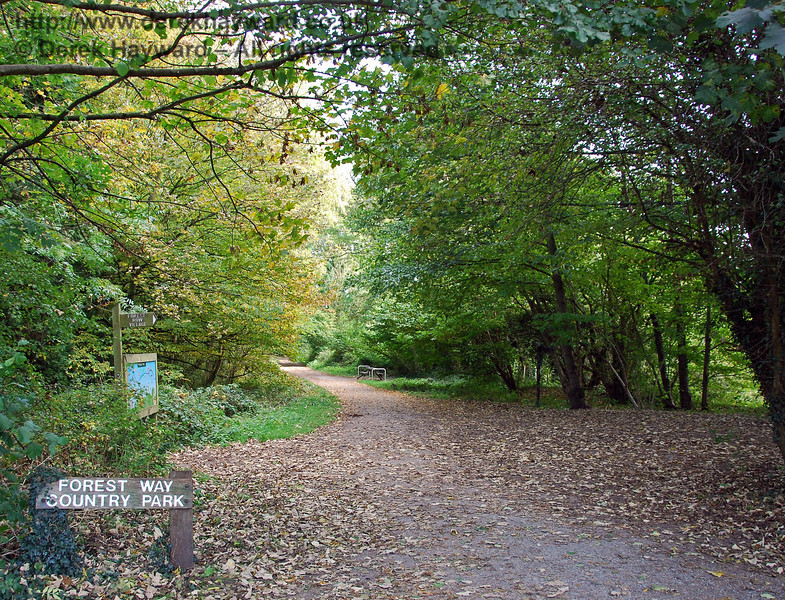 Still looking east at Forest Row the sign confirms the status of the old railway as Forest Row Country Park, but the path widens towards the camera.  This is actually the junction at the eastern end of the station as the track opened out to double track and a line led off to a goods yard. 18.10.2009