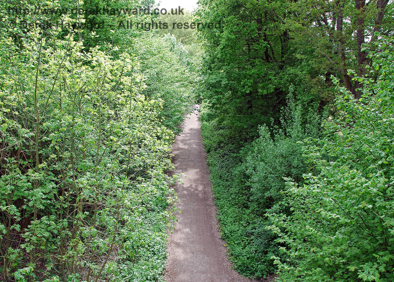 Looking west along the old track bed (now Forest Way footpath and cycle route) from the top of Ashdown House Bridge. 09.05.2009