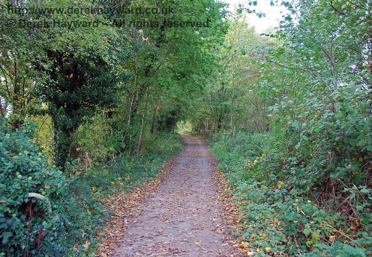 Looking west up the old track bed that climbs up towards East Grinstead. When the railway was open this long ascent was called Brambletye Bank. 18.10.2009