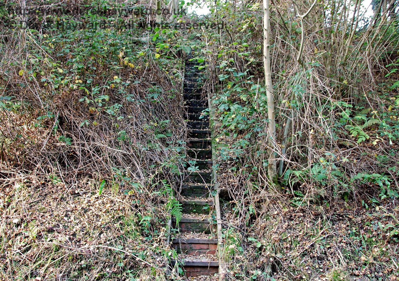 Just east of the bridge a set of overgrown steps appear to lead up the steep northern embankment.  These might have been an old railway access point, or possibly drainage from a culvert. 18.10.2009