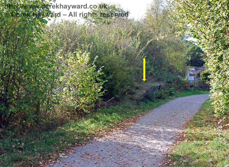 Another view of the short section of suviving platform at Hartfield Station. The signal box would have been sited  at the end of the platform nearest the camera, roughly where the light coloured bush is growing. 18.10.2009
