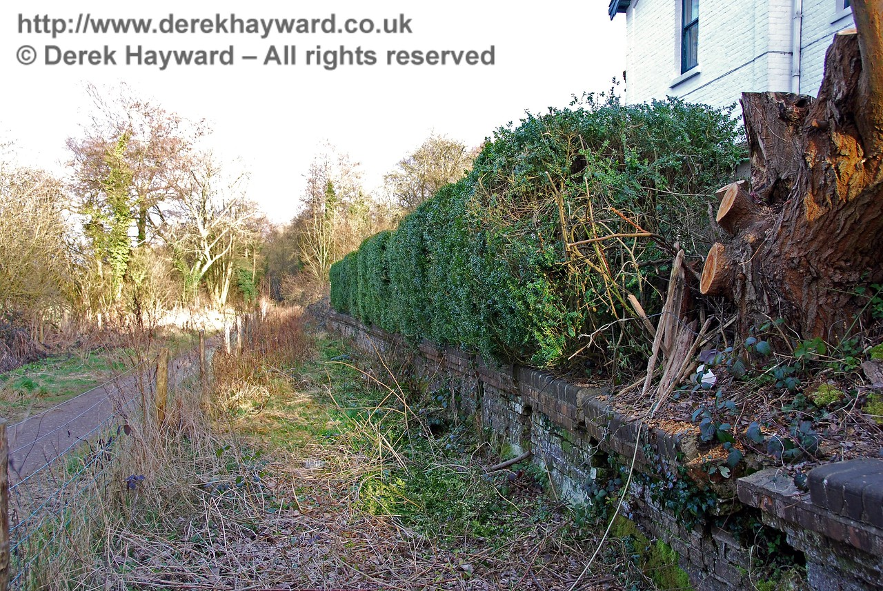 A closer view of Withyham Station platform, looking east.  Some recent tree felling had taken place on the platform edge. 02.03.2009
