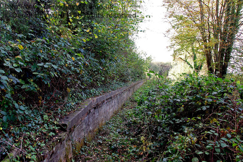 This is the eastern end of the platform at Withyham Station, looking west. Although rather overgrown the structure is still largely intact. 18.10.2009