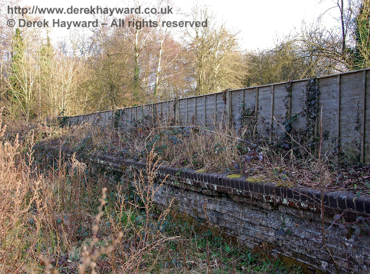 Further east, the hedge around Withyham Station house is replaced by a fence.  On the whole the old platform is better defined than at Hartfield. 02.03.2009