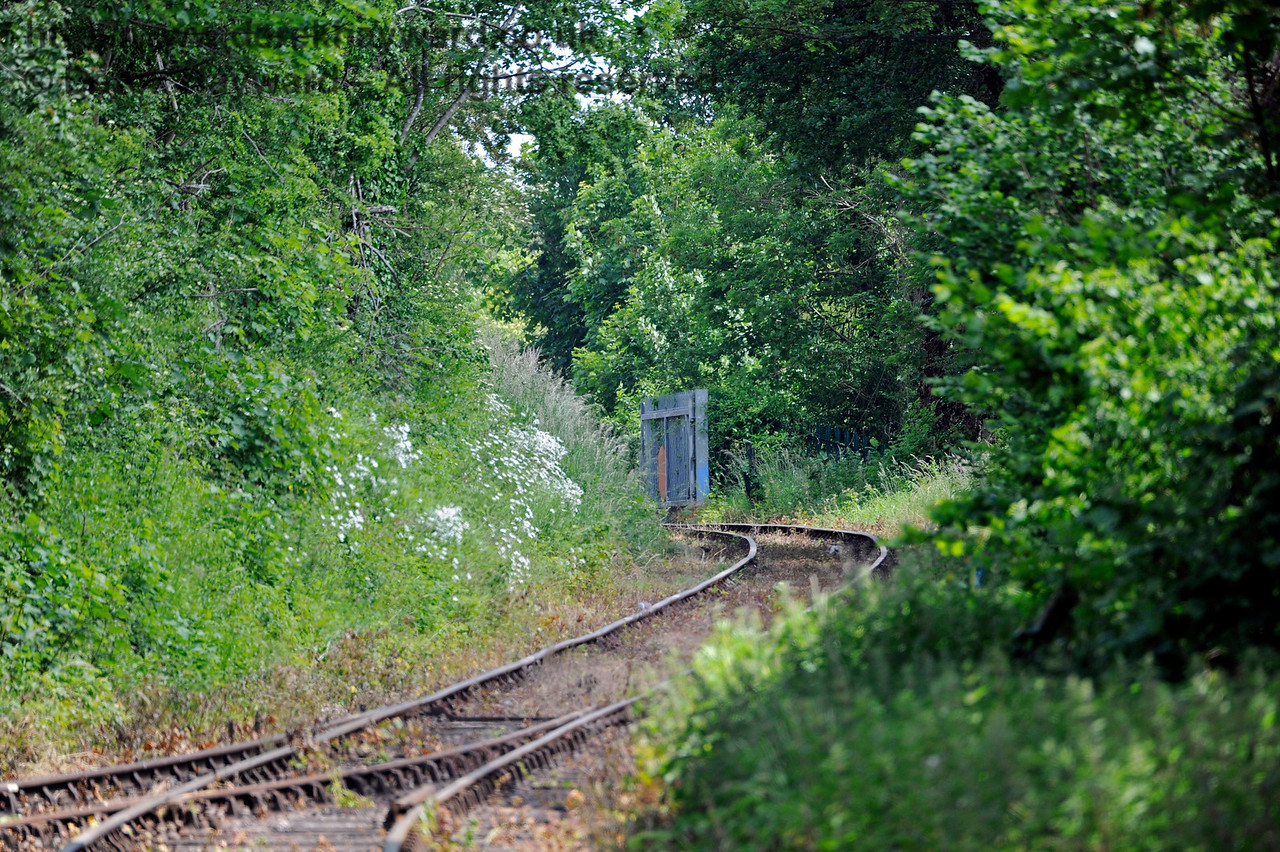 Looking east in the direction of Eythorne with a long lens.  Shepherdswell Station, East Kent Railway. 17.06.2015  11368