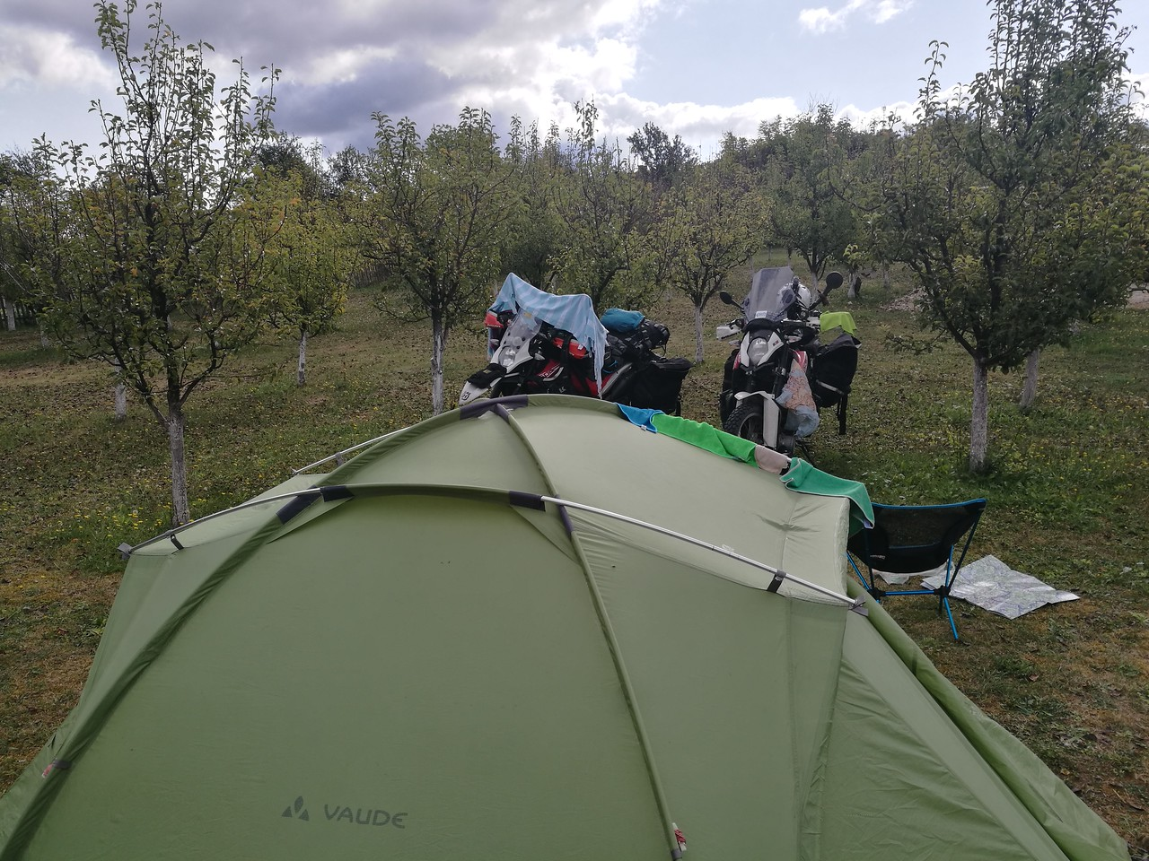 Our tent in the pear orchard