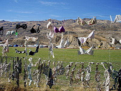Cardrona Bra fence.Several days later a local lady who needed a few new bras was caught cutting them all off.