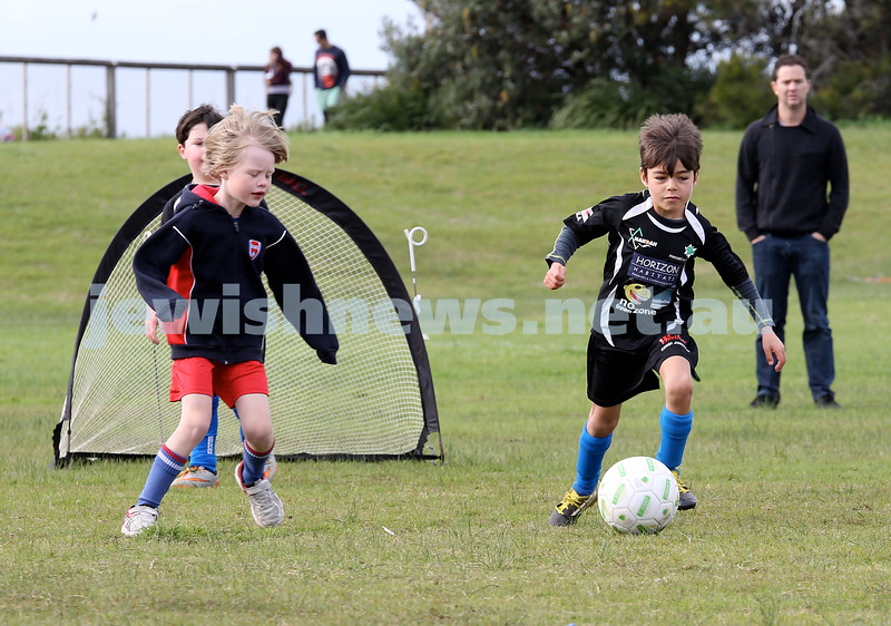 ESFA Soccer Gala Day at Christison Park in Vaucluse. Maccabi Lions (black) vs East Minecrafters U7. Pic Noel Kessel.