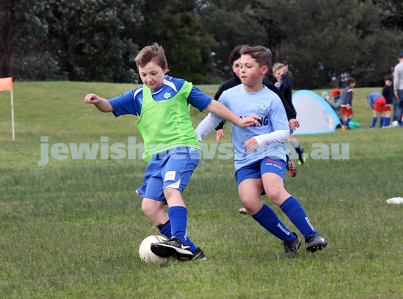 ESFA Soccer Gala Day at Christison Park in Vaucluse. Maccabi U11 teams play each other. Pic Noel Kessel.