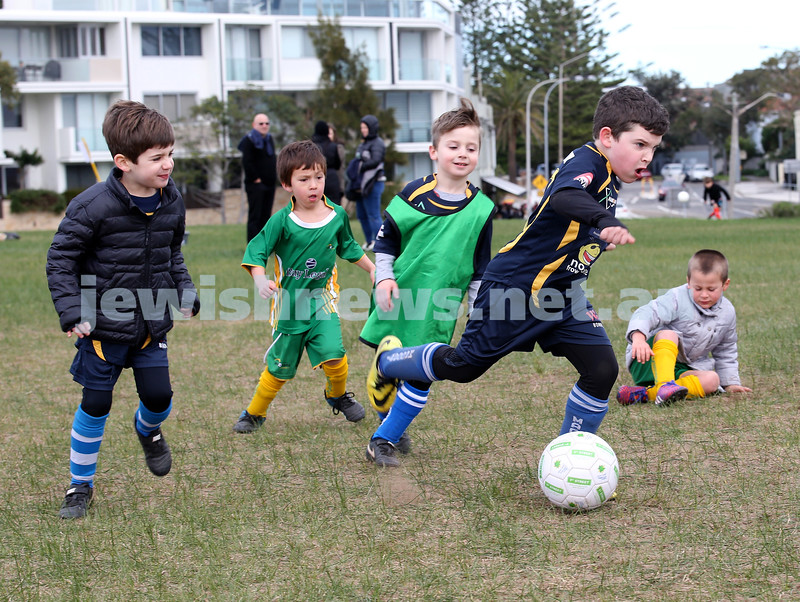 ESFA Soccer Gala Day at Christison Park in Vaucluse. Maccabi Bears vs Maroubra Rangers U6. Pic Noel Kessel.