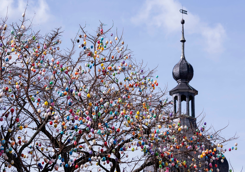 . A decorated  robinia tree with more than 10,000 painted Easter eggs stands in front of the city gate tower in Saalfeld, central Germany, Friday, March 30, 2018.  (AP Photo/Jens Meyer)