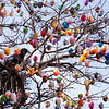 Germany Easter Egg Tree
