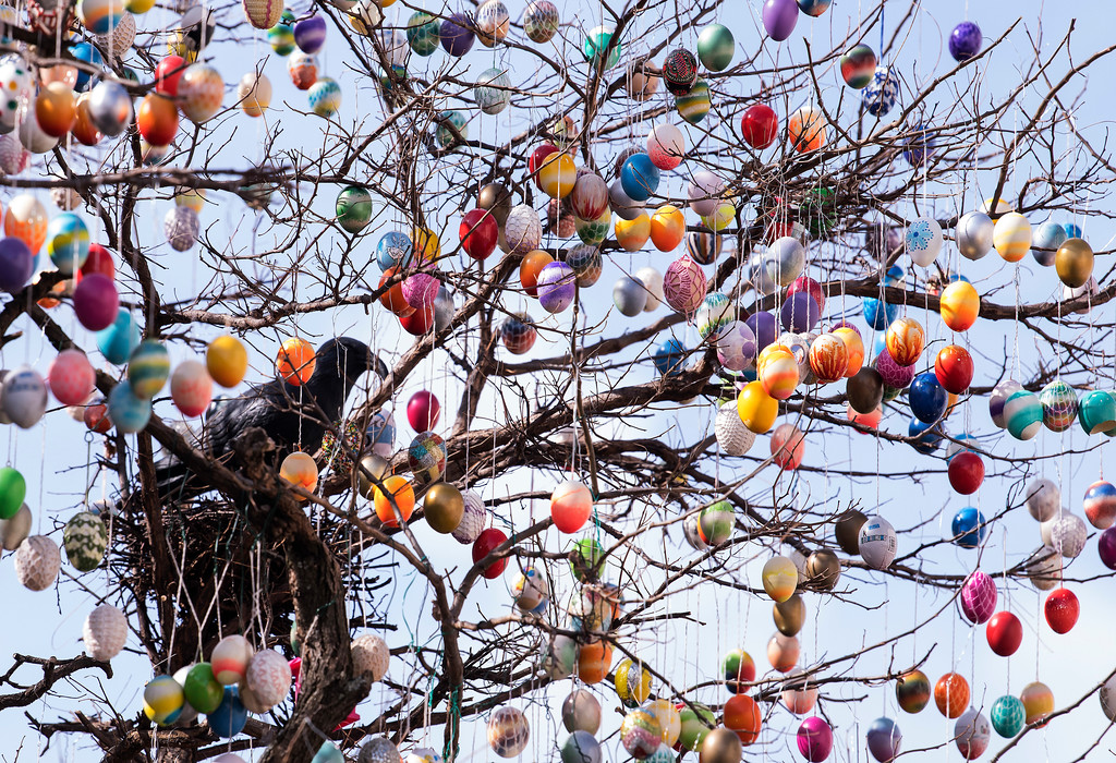 . A robinia tree, decorated with more than 10,000 painted Easter eggs, stands in the old town in Saalfeld, central Germany, Good Friday, March 30, 2018. (AP Photo/Jens Meyer)