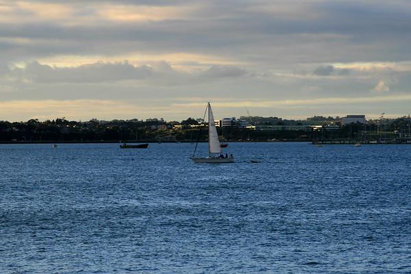 Auckland 029.jpg