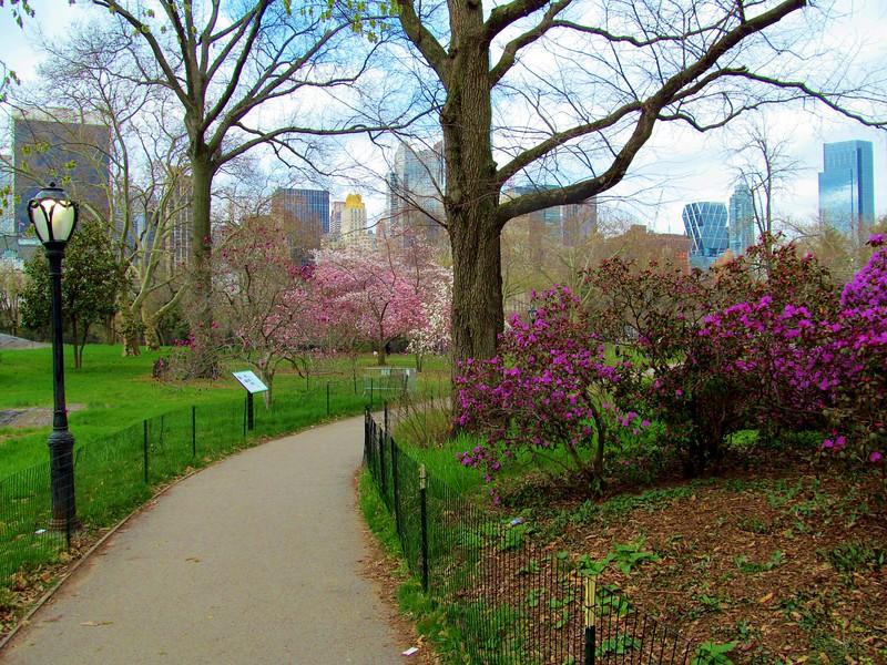 Easter Morning in Central Park 2016
