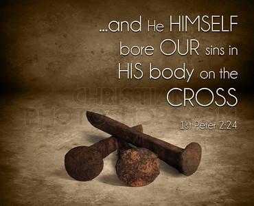 Bore our sins