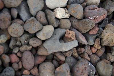 shark rock