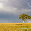 A full rainbow over the steppe of the Serengeti National Park, Tanzania